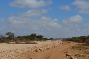 SOMALILAND-KADLEYE 2014 2354