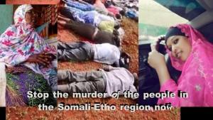 Ethio-Som murder